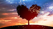 tree in heart shape and dramatic sunset sky, concept of charity and love