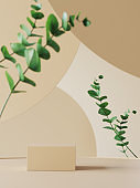 Background for cosmetic product presentation. Podium with eucalyptus leaves and earth tone circular geometry background. 3d render.