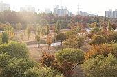 Autumn of Seonyudo Park in Seoul City, South Korea.