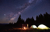 Group of tourists are standing around burning fire near the tents against backdrop pine forest under starry sky