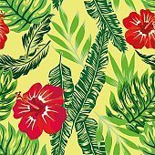 tropical hibiscus green plants pattern