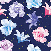 Multicolor flowers roses lily blue background