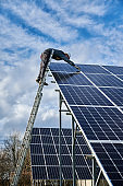 Male technician checking photovoltaic solar panel.