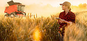 Woman farmer examines the field of cereals and sends data to the cloud from the tablet.