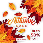 Autumn sale background vector with decorative leaves. Autumn Sale Vector background Illustration. Abstract Autumn Sale background design template for advertising, flyer, web banner, poster, brochure