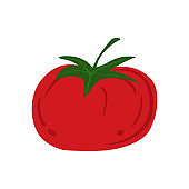 Tomato in doodle style isolated on white background. Hand drawn cherry tomatoes vegetable.