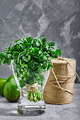 A bunch of fresh cilantro in a vase of water. Gray background, photo for delivery stores