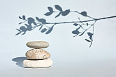 Three grey roundstones with a shadow of sprig with leaf on pastel light blue background. Spa stones, zen concept.Shadows photography.Nature aesthetic