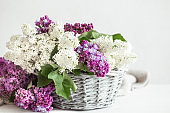 Spring composition with lilac flowers in a wicker basket.