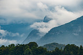 Mountains covered with forest in clouds.