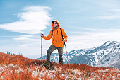 Dressed bright orange jacket backpacker walking by red blueberry field using trekking poles with mountain range background, Slovakia. Active people and European mountain hiking tourism concept image.