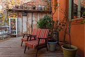 cozy backyard with vintage chairs and potted plants