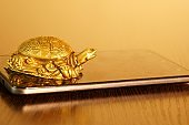 Metal turtle on your smartphone.