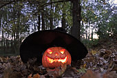 Halloween holiday . Pumpkin Jack Glowing in a black hat in the night dark autumn forest.Ominous shining pumpkin lantern.Festive halloween street decoration