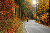 Autumn walks and travel. A traveler with a backpack on the road in the autumn forest in the rays of bright light. Sports and hiking in the fall season.Autumn Road view. beautiful nature landscape
