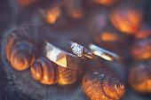 Wedding rings on sea wedding