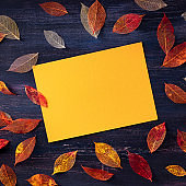 Square autumn design template, a flat lay of fall leaves with a greeting card, for flyers, gift cards and invitations