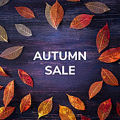 Autum Sale. Square discount banner or flier design template with fall leaves and a place for a logo