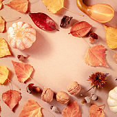 Square autumn banner for an ad or invitation, with a place for text, a flat lay composition with leaves
