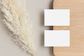 Two white business cards mockup 85x55mm with a pampas grass decoration.