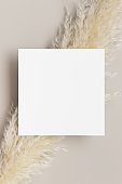 Invitation square card mockup with a pampas grass decoration.