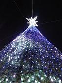 VH544 Christmas tree
