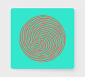 Abstract striped design element. Spiral, rotation and swirling movement. Vector illustration with dynamic effect.