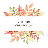 Hand drawn watercolor illustration. Frame with fall branches, maple leaves, orange and green foliage. Forest design elements. Autumn collection. Perfect for seasonal advertisement, invitations, cards