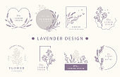Beauty occult design collection with lavender.Vector illustration for icon,sticker,printable and tattoo