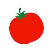 Isolated tomato icon