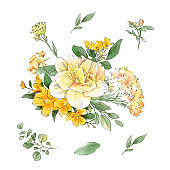 Watercolor bouquets of spring flowers hand drawing