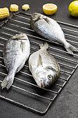 Raw dorado fish on metal grill grate.