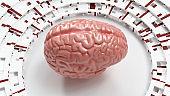 abs Brain presentation