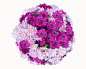 above view bunch of flowers, chrysanthemum bouquet