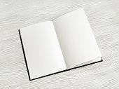 Blank book mock up