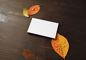 Business card, leaves