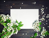 Paper background, spring flowers
