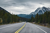 Road trip with Rocky mountains in autumn forest on gloomy at Banff national park