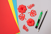 Master class to create a flower from paper.Children's creativity.Favorite hobby for children.Materials and tools.