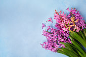 Purple and pink hyacinths on a blue background as a texture, backdrop. Idea, concept of congratulations, top view