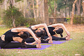 Asian Beautiful Women Group Doing yoga by the lake in the morning with warm sunshine