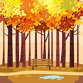 Autumn Park landscape yellow orange red foliage trees, walkway bench. Fall mood outdoor cityscape. Vector isolated illustration isolated