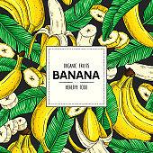 Vector hand drawn banner with organic banana