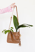 Woman's hand holding stylish designer bag decorated with flower bouquet Stylish advertisment idea on white background