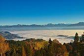 over the sea of mist, autumn, Bachtel, Zurich oberland