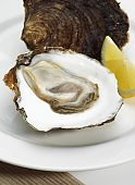 a French Oyster called Plate de Belon, ostrea edulis, Seafoods with Lemon on Plate