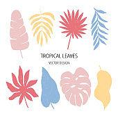 Tropical leaf flat vector illustration set. Jungle print