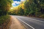 asphalt road and forest.