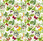 Seamless pattern with meadow grass, butterflies and berries. Watercolor