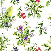 Floral seamless pattern - flowers, summer berries, wild herbs, meadow grass. Watercolor repeated background